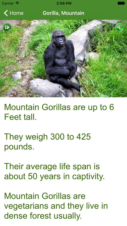 iLearnFacts - Mammals screenshot-4