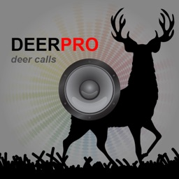 Deer Sounds & Deer Calls for Big Game Hunting