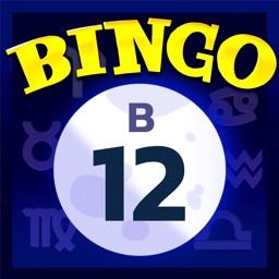 Video Bingo Malibu