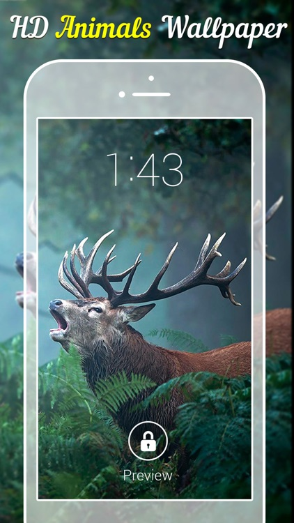 Animal Wallpapers & Backgrounds screenshot-3