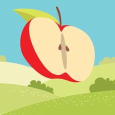 Activities of Legend Apple2