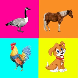 Farm Animals - Kids Learning Matching Game