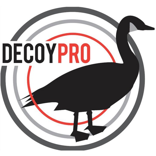 Goose Hunting Diagrams - DecoyPro