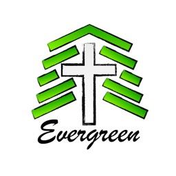 Evergreen Keith