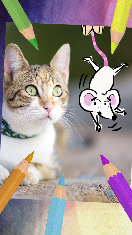 Drawings on photos – Take notes & draw on images screenshot-3