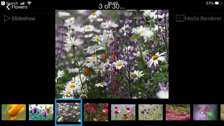 ArkMC wireless HD video player screenshot-8