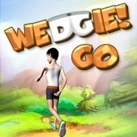 Codes for Wedgie Go - Multiplayer Game Hack