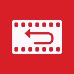 Reverser Camera Loop Repeator