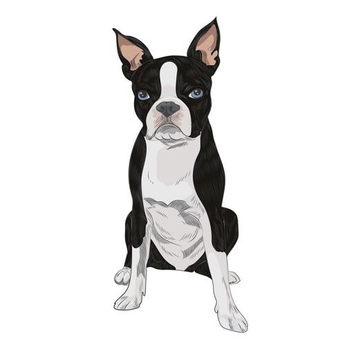DogBreedsTL