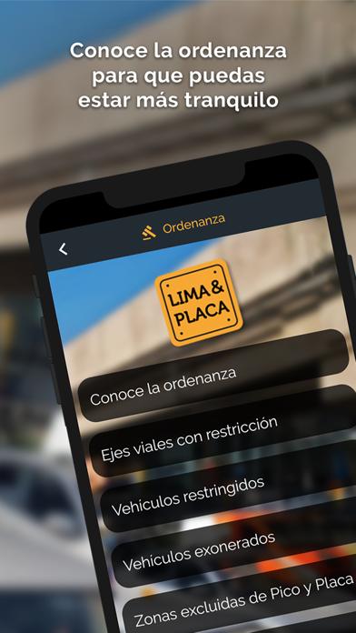 Lima & PlacaCaptura de pantalla de4