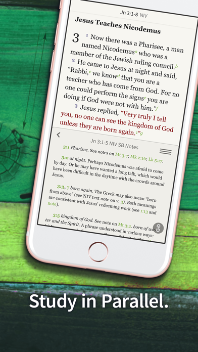 Bible App by Olive Treeのおすすめ画像9