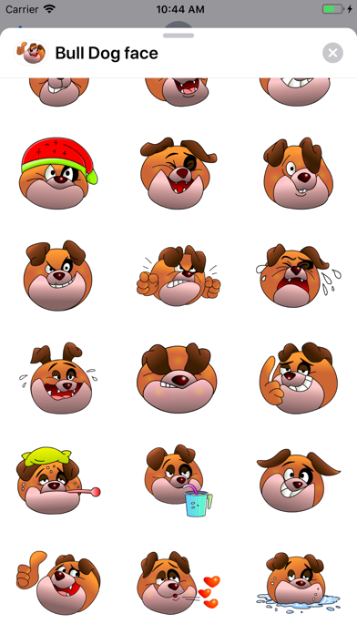 Bull Dog face screenshot 3