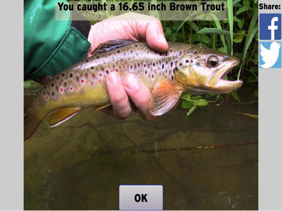 Fly Fishing Simulator screenshot