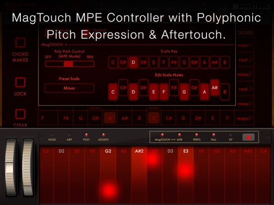 Magellan Synthesizer 2 screenshot 16