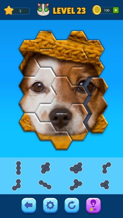 Hexa Jigsaw Puzzle ® screenshot 4