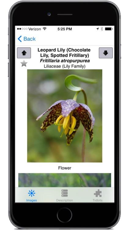 Flora of Yellowstone screenshot-3