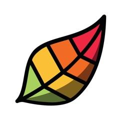 Pigment - 成人涂色簿