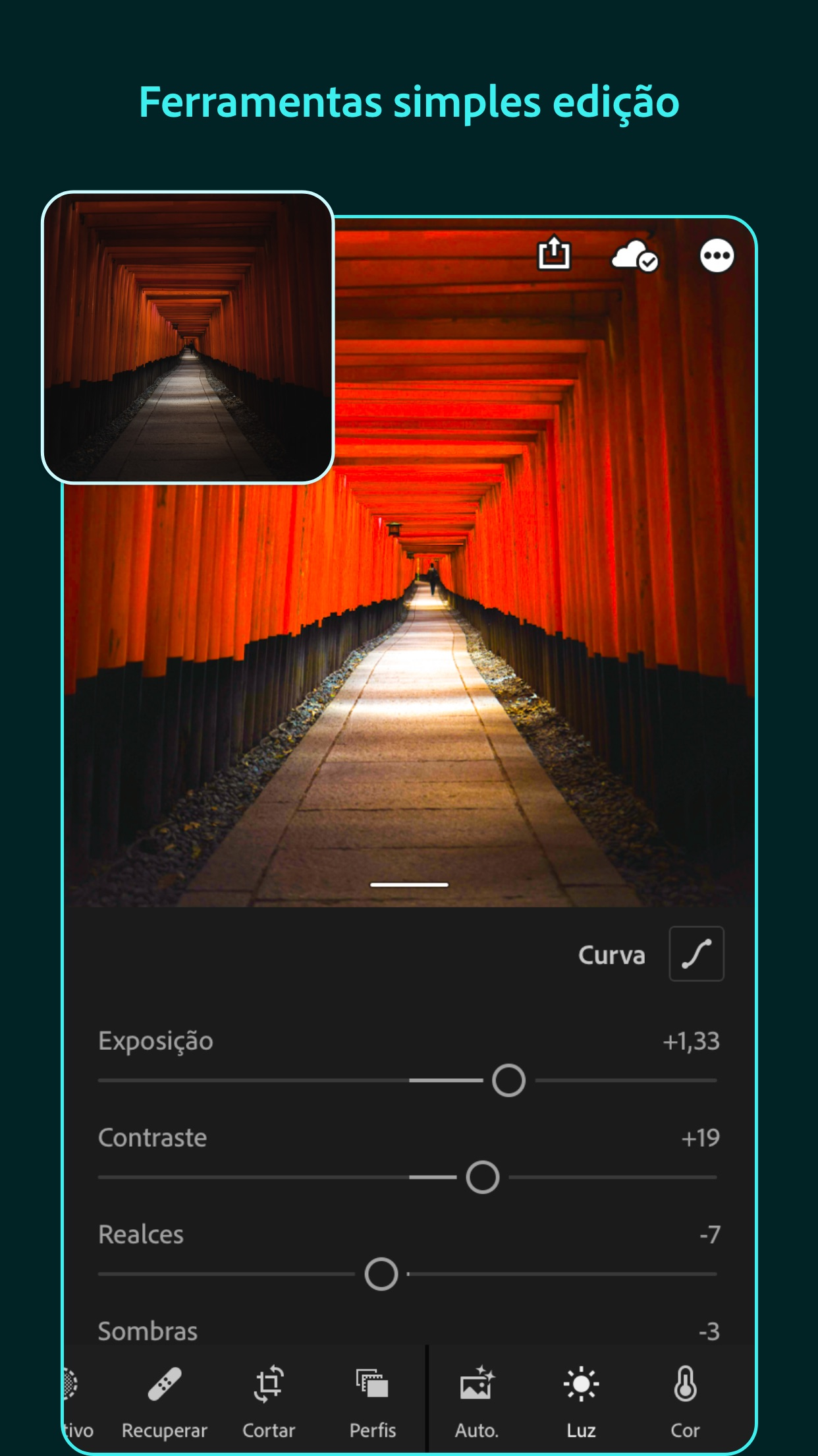 Screenshot do app Adobe Lightroom: Editar Fotos