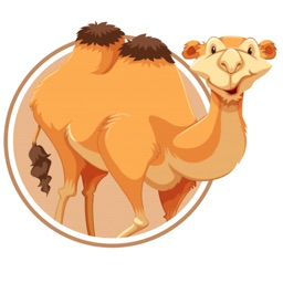 Camel: Beauty Cam Photo Filter