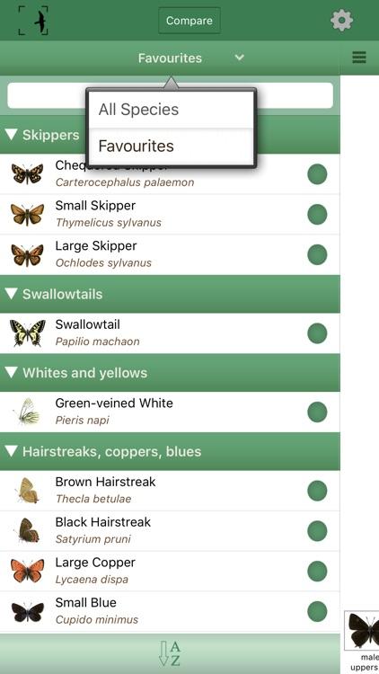 British & Irish Butterflies screenshot-4