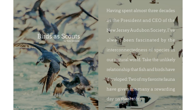 Tail Fly Fishing Magazine screenshot-5