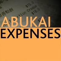 Codes for ABUKAI Expense Reports Receipt Hack