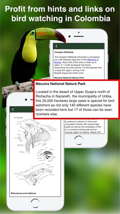 All Birds Colombia field guide screenshot-5