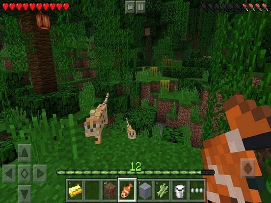 iPad Image of Minecraft