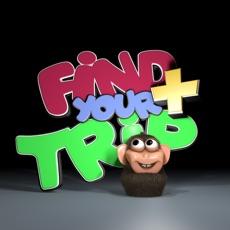 Activities of Find Your Trip