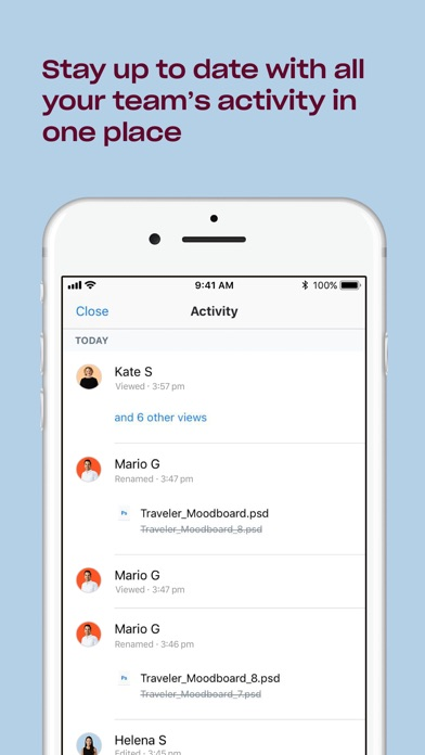 Dropbox Screenshot on iOS