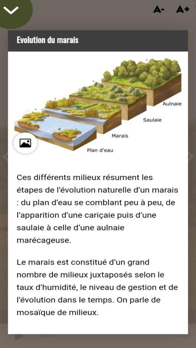 Marais de Saône screenshot #3