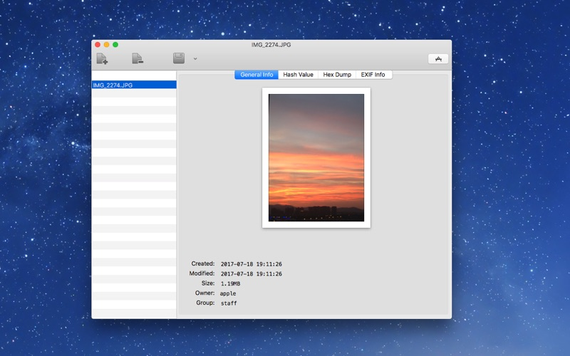 Any File Info Screenshot