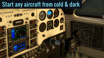 Screenshot from X-Plane Flight Simulator