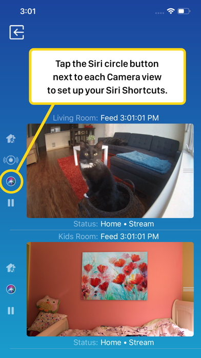download Watch Cam for Nest Cam apps 4