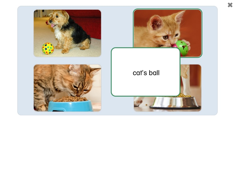 See and Learn Phrases 1 screenshot-6