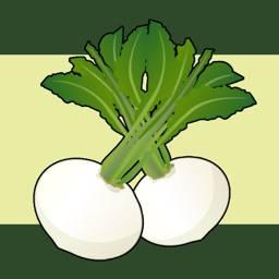 Turnip Forecast