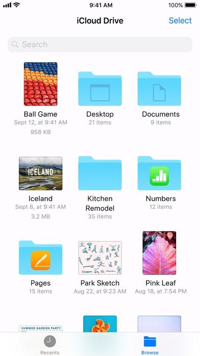 Files Screenshot