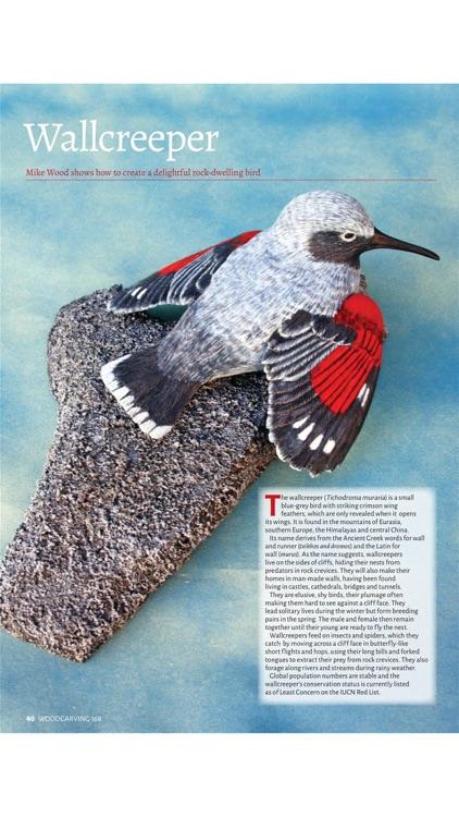 Woodcarving Magazine screenshot-4