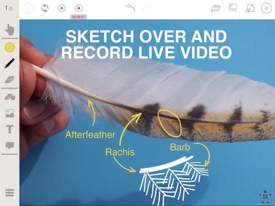 Stage Pro by Belkin for iPad Screenshots