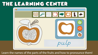 Montessori Parts of Fruits Screenshots