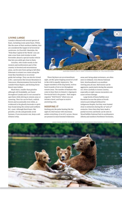 Globelite Travel Magazine screenshot-4