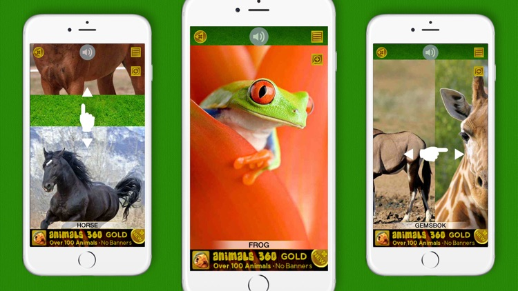 Animals 360 screenshot-2