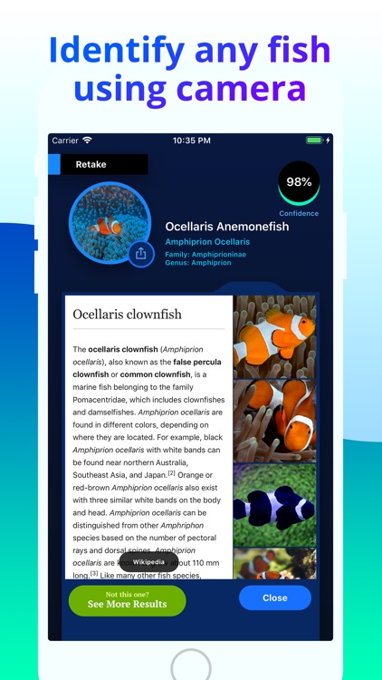 Fish Identifier screenshot-1