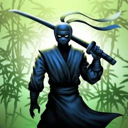 Ninja warrior: Shadow fight