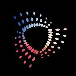 Disflow - Motion Image Editor