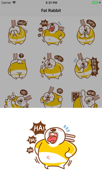 Fat Rabbit