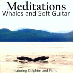 Meditations Whales Soft Guitar