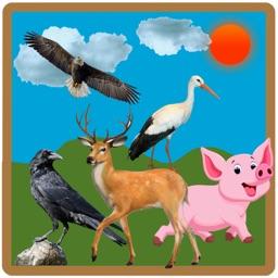 Animal Learning for Kids