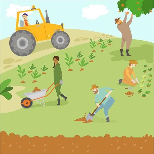 AgricultureDTL