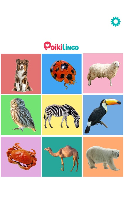 My First Words: Learn Animals